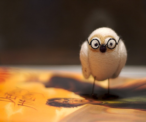 deathly hallows, harry potter, and hedwig image