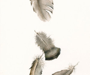 art, feather, and beautiful image