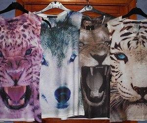 fashion, animal, and tiger image
