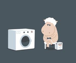 de, sheep, and pinterest image