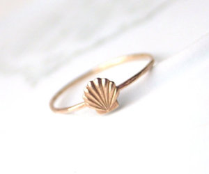 ring, shell, and gold image