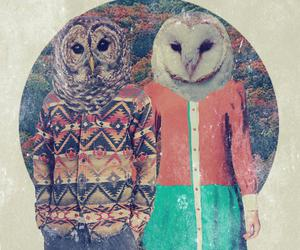 owl, couple, and indie image