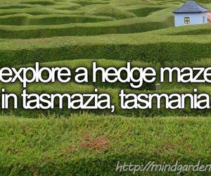 before i die, countries, and hedge maze image