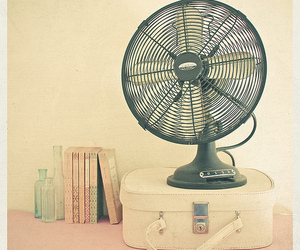 fan, book, and vintage image
