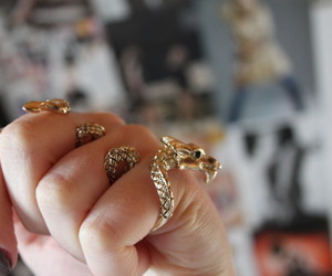 dragon, ring, and rings image