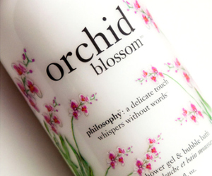 orchid, philosophy, and blossom image