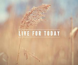 live and today image