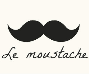 moustache, mustache, and le moustache image