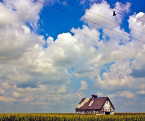barn, clouds, and bird image