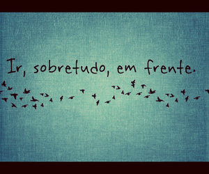 bird and frases image