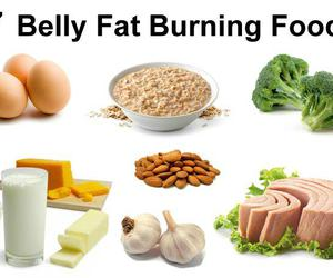 belly fat burning foods image