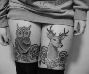tattoo, owl, and legs image