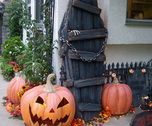 decor, events, and Halloween image