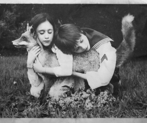 black and white, fox, and kids image