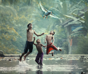 bird, kids, and river image
