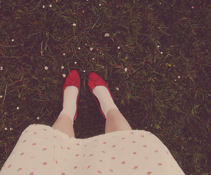 daisies, dorothy, and dress image