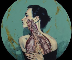 art, anatomy, and heart image