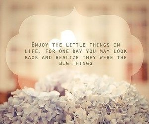 quote, life, and enjoy image