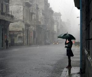 rain, umbrella, and alone image
