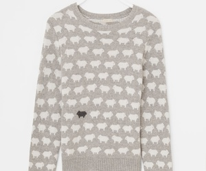 sheep and sweater image
