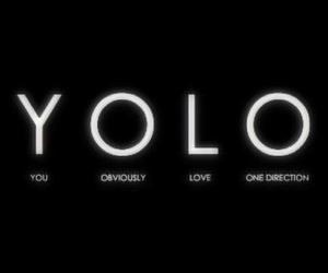 yes, yolo, and 1d image