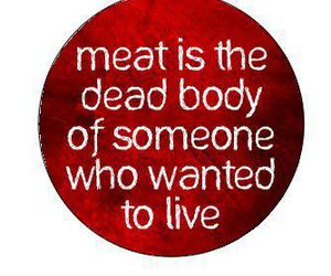 meat, animal, and vegan image