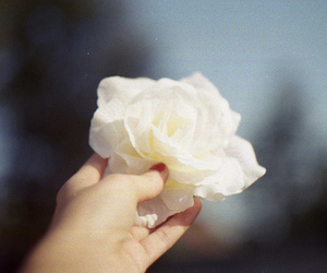 flor, hand, and pretty image