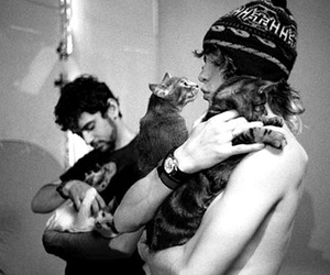 MGMT, cat, and boy image