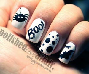 beauty, Halloween, and spider image