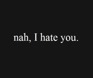 hate, quotes, and you image