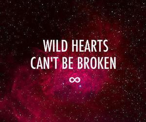 wild, broken, and heart image