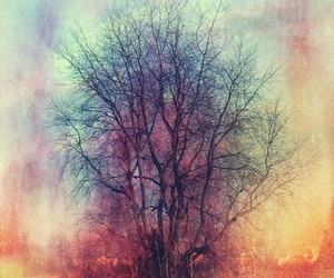 tree, art, and colorful image