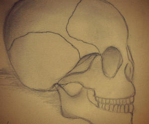 beautifull, drawing, and skull image