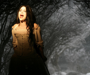 amy lee, evanescence, and lithium image