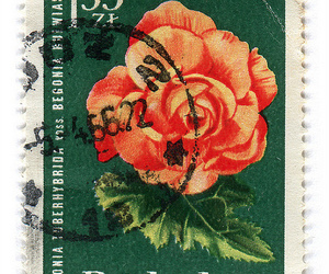 stamp and vintage image