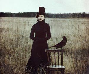 crow, field, and top hat image