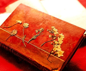 antique, flowers, and notebook image