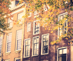 amsterdam, building, and fall image