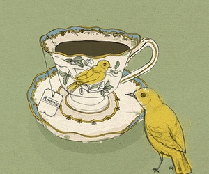 bird, tea, and yellow image