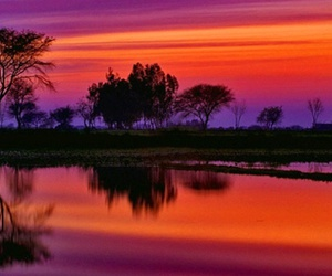 nature and sunset image