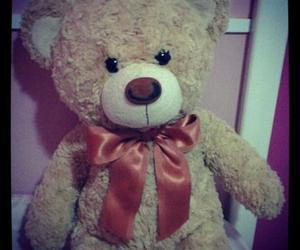 bear, TED, and tumblr image