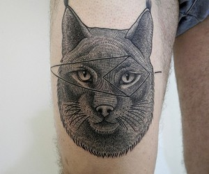 cat, cat tattoo, and ink image
