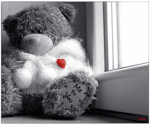 bear, toy, and heart image