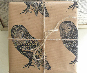 gift, owl, and present image