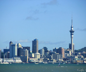auckland, cityscape, and new zealand image