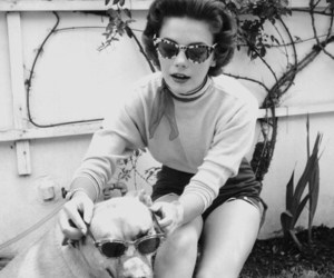 vintage, sunglasses, and dog image
