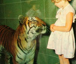 tiger, girl, and animal image