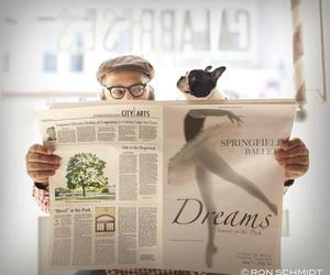 dog, funny, and Dream image