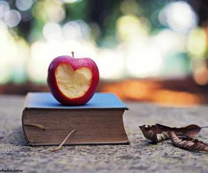 book, apple, and love image