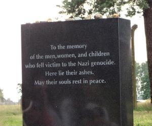 auschwitz, holocaust, and jews image